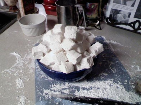 Mmmmmarshmallows! forgive the photographic craptasticness.